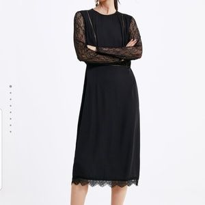 NWT Zara Contrasting Lace Midi Dress